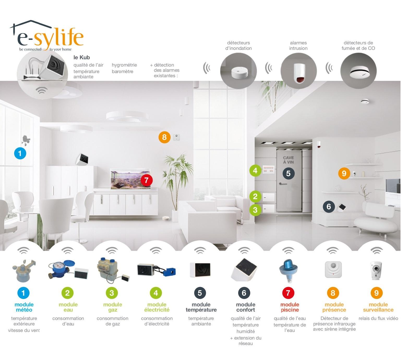 e-sylife - Schema de principe Fr sans marges